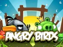 Angry Birds picture2