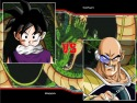 Dragon Ball Z MUGEN Edition 2011 picture8