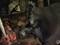 Batman: Arkham City picture6