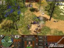 Age of Empires III picture4