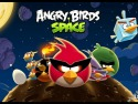 Angry Birds Space picture1