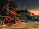 Kung Fu Panda picture13