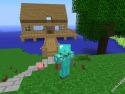 Minecraft picture10