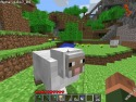 Minecraft picture14