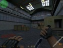 Counter Strike picture9