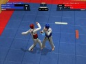Taekwondo World Championship picture14