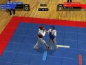 Taekwondo World Championship picture3