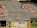 Empire Earth II picture4