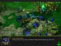 Warcraft III: The Frozen Throne picture15