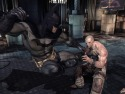 Batman: Arkham Asylum picture11