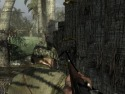 Call of Duty: World at War picture17