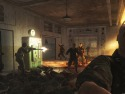 Call of Duty: World at War picture4