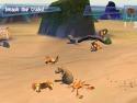 Madagascar picture14