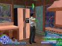 The Sims 2 picture3
