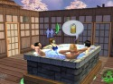 The Sims 2 picture8
