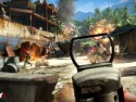 Far Cry 3 picture12