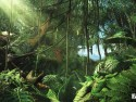 Far Cry 3 picture18