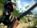 Far Cry 3 picture19