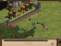Age of Empires II HD picture4