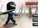 Ninja Guy picture1