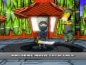 Ninja Guy picture14