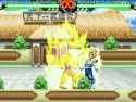 Dragon Ball Z MUGEN Edition 2007 picture8
