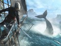 Assassin's Creed IV: Black Flag picture2